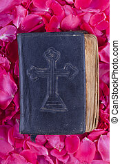 bible on roses