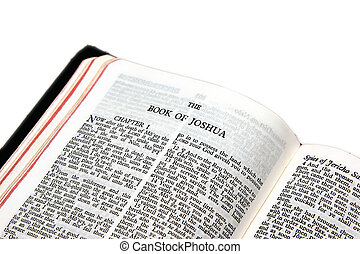 holy bible open to the book of joshua, on white