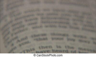 Bible Pan with Shallow DOF