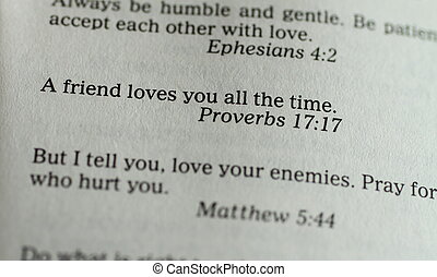 Bible, Proverbs Verse - A close up image of text about...