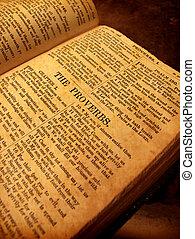 bible sainte