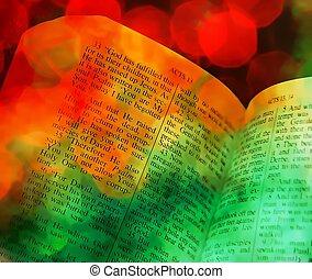 Bible Scripture book Christmas Xmas - Old retro vintage open...