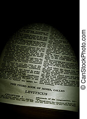 bible series leviticus sepia