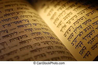 Bible - Hebrew Bible Textl - Jewish Related Item