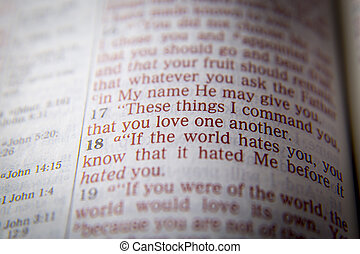 Bible text -  LOVE ONE ANOTHER