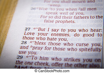 bible text love your enemies but i say to you who hear love your