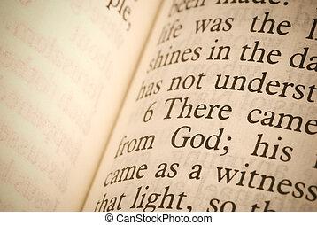 bible, text
