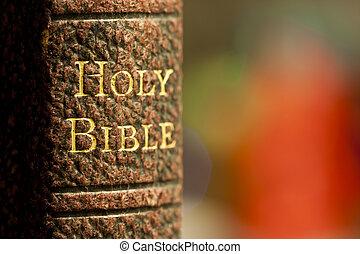 biblia, święty