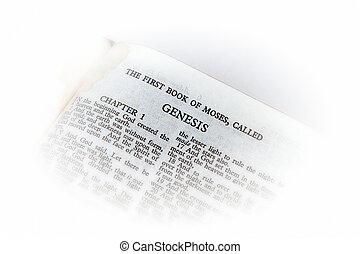 biblia, abierto, génesis, viñeta
