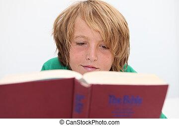 biblia, chrześcijanin, czytanie, dziecko