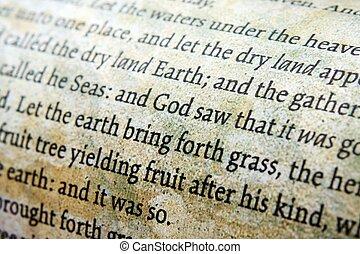 biblia, cicatrizarse