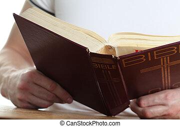 biblia, czytanie, człowiek