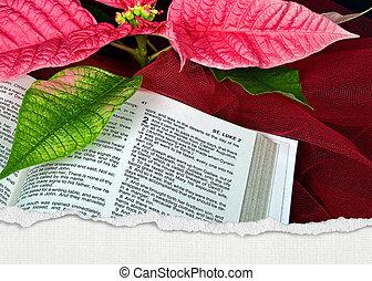 biblia, navidad, santo