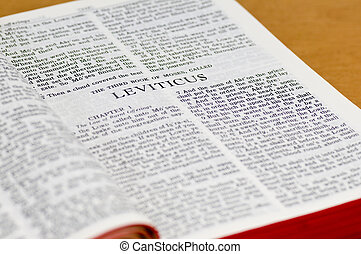 biblia, -, página, leviticus