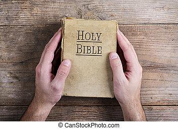 biblia, y, obreros rezando