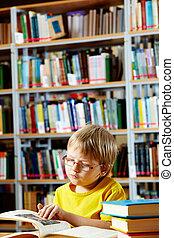 biblioteca, goer