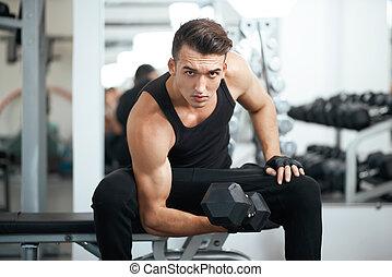 bicep, 鍛煉, 肌肉, 人, dumbbell