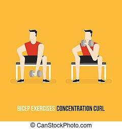 bicep, curl., 集中, exercises.