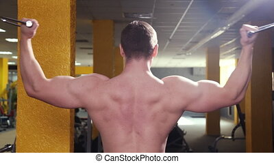 biceps, homme, gymnase, trains