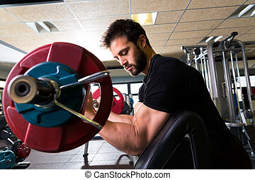 biceps preacher bench arm curl workout man at gym - biceps ...