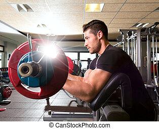 biceps, sala gimnastyczna, ręka, ława, kaznodzieja, ufryzować, trening, człowiek