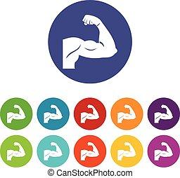 Biceps set icons
