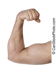 Biceps - Close up of man's arm showing biceps