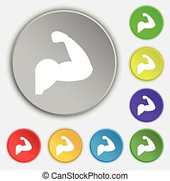 Biceps strong arm. Muscle icon sign. Symbol on eight flat buttons. Vector
