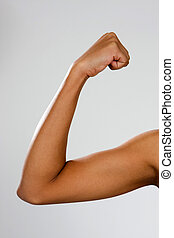 Biceps - The biceps brachii muscle of a young, thin African-...