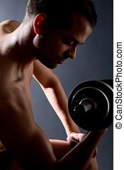 biceps, träningen