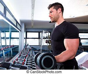 biceps, trening, stosowność, hantel, sala gimnastyczna, człowiek