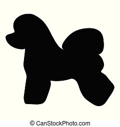 bichon, casta, silueta, perro, frise.