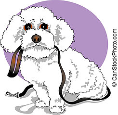 Bichon Frise, Poodle or designer dog holding it's leash and waiting for a walk cartoon clip art perfect for scrapbooking, a logo, a sign or a business card