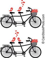 bicicleta, com, ame pássaros, vetorial