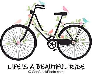 bicicleta, com, pássaros, e, flores
