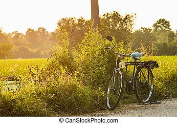 bicicleta, día soleado