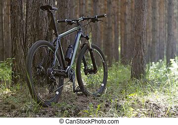 bicicleta, em, a, madeiras