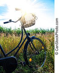 bicicleta, em, paisagem