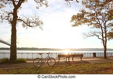 bicicleta, en, el, otoño, parque