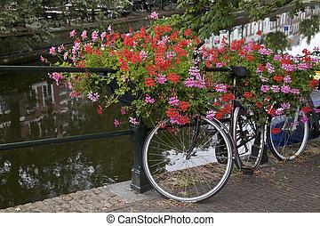 bicicleta, en, un, puente, países bajos