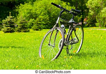 bicicleta, ligado, capim