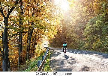 bicicleta, natureza, ensolarado, jovem, desportista, outono, exterior, montando