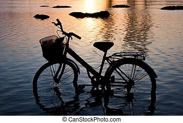 bicicleta, silueta, estar água, em, sunset.