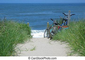 bicicletas, playa