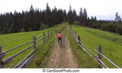 bicicletta, giovane, alto plateau, sentiero per cavalcate,...