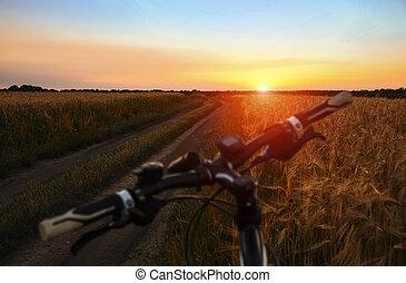 bicicletta montagna, in, campo, a, tramonto