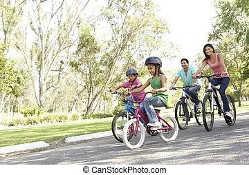 biciclette passeggiare, parco, giovane famiglia