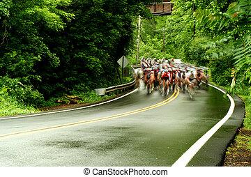 bicikli, út, faj