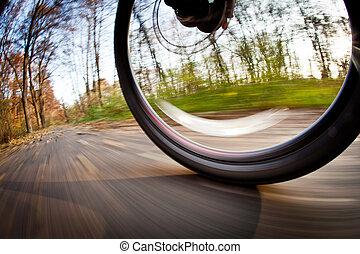 bicikli elnyomott, alatt, egy, városi park, képben látható,...