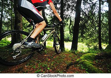 bicikli, felmegy, külső, ember